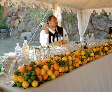 Food and drink displays elizabeth anne designs the for Food bar orange
