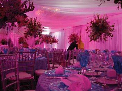 pink-led-lighting.jpg