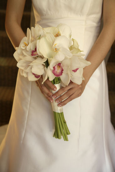 Wedding Bouquet Orchid Ideas : Orchid bouquet bilder uez