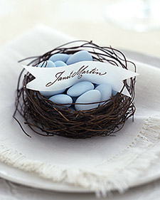 bird\'s nest favors