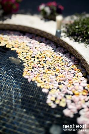 Flower-Petals-in-Fountain