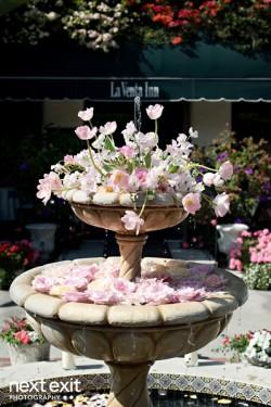 Flowers-in-Fountain