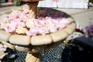 Roses-in-Fountain