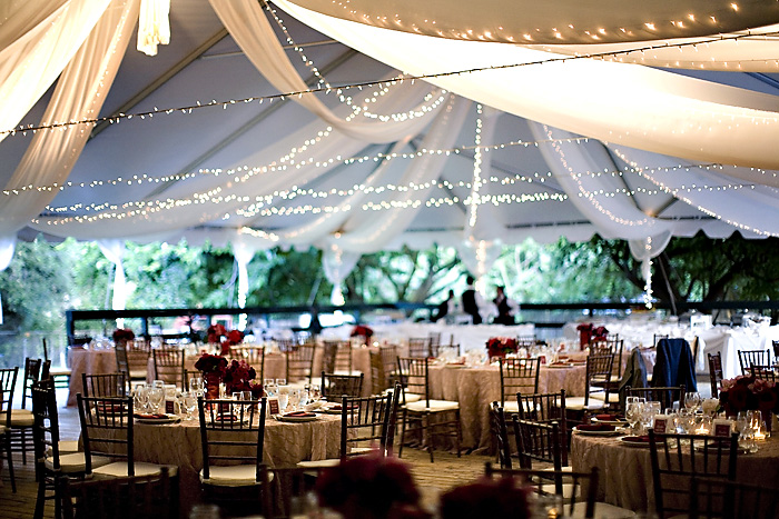 Tent wedding reception pictures gallery wedding decoration ideas wedding reception tent lighting elizabeth anne designs the junglespirit Images