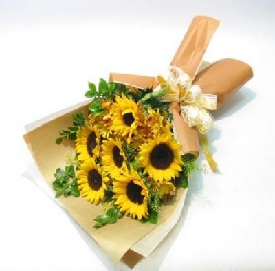 sunflower-b5