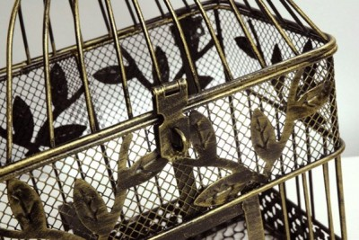 birdcage3