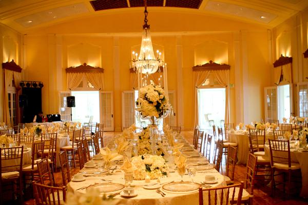 Elegant Ivory Reception