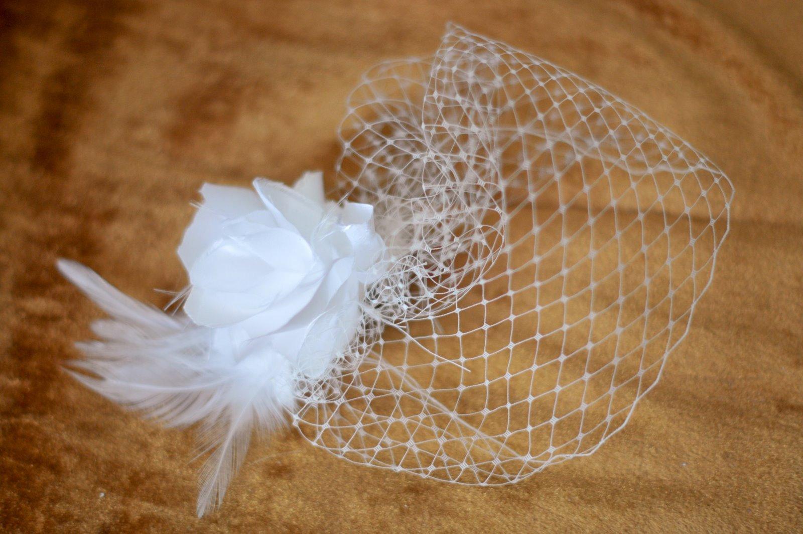 My DIY Birdcage Veil