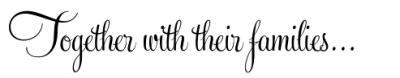 feel script wedding invitation font