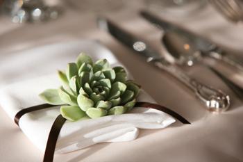 succulent-napkin-accent