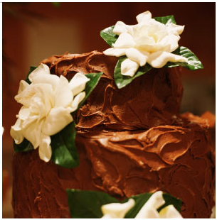 chocolate-cake-with-white-flowers