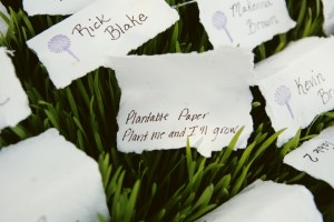 heather-escort-cards-wheatgrass