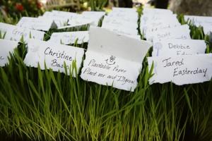 heather-escort-cards-wheatgrass2