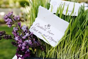 heather-wheatgrass-lilacs