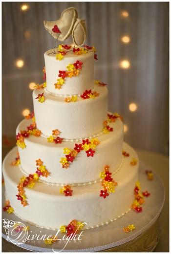orange-and-yellow-cake