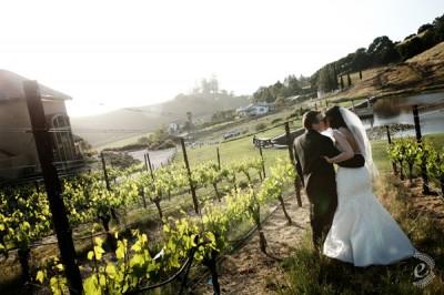 sonoma-wine-country-wedding-19