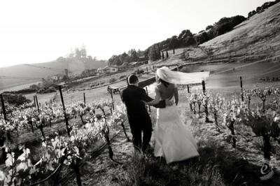 sonoma-wine-country-wedding-31