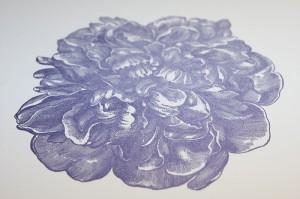 dont-press-me-purple-letterpress-invitation