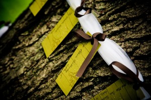 escort-cards-hanging-from-tree