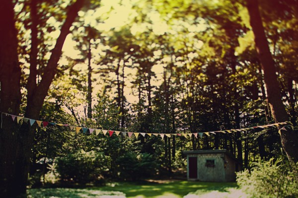 bunting-in-trees