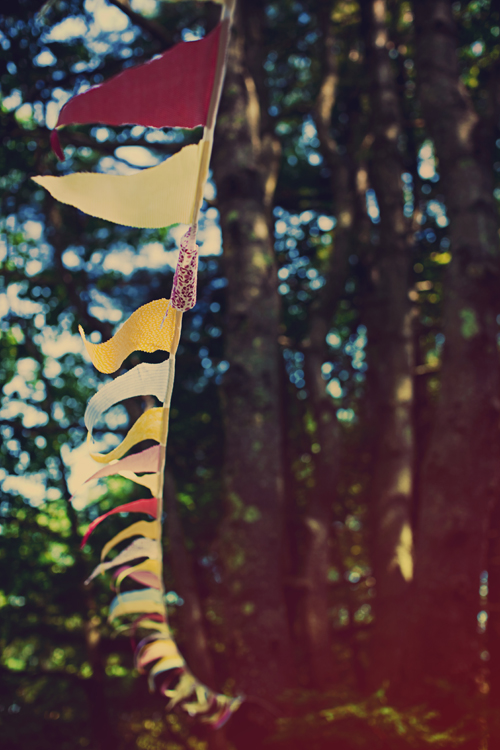 bunting-strung-from-trees-wedding-ideas