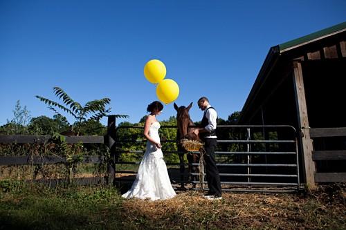 horses-balloons-wedding-shoot
