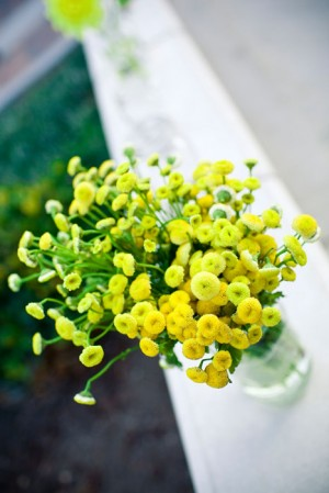 yellow-mums-in-vases