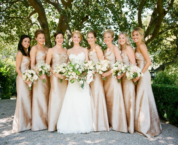 Champagne Bridesmaids Dresses - Copyright A Bryan Photo - No unauthorized use without written permission