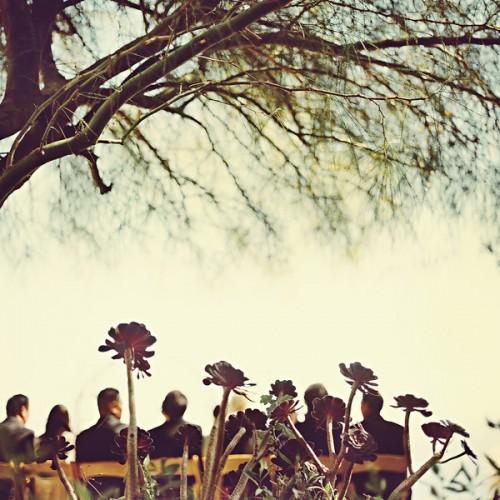 malibu-wedding-ceremony