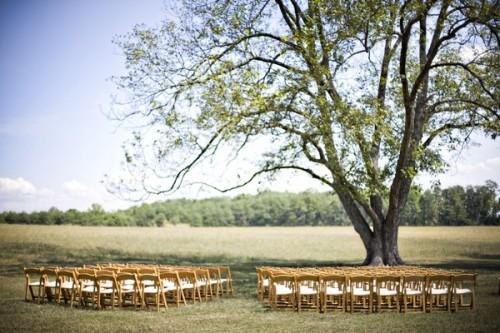 outdoor-wedding-ceremony-under-tree