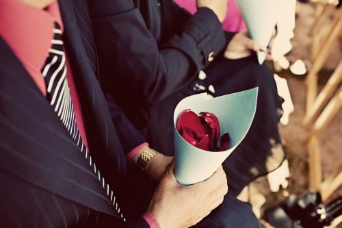 petal-toss-cones