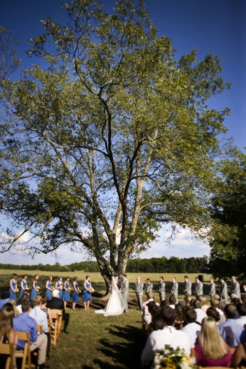 wedding-ceremony-under-tree