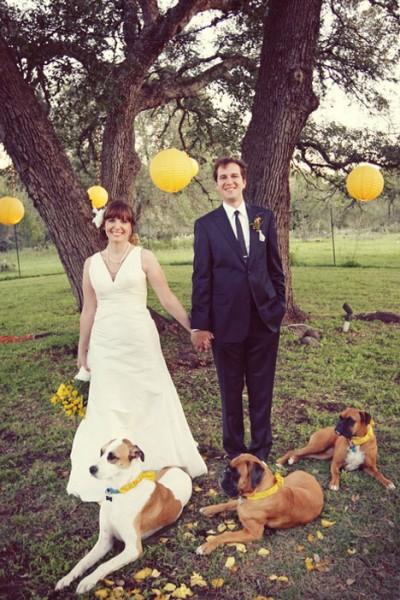 bride-and-groom-with-dogs-yellow-diy-wedding