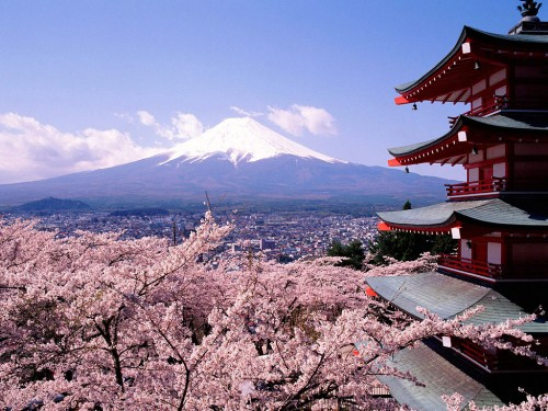 cherry_blossoms_and_mount_fuji_japan