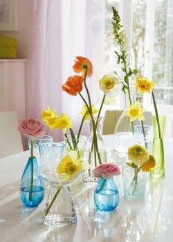 single-flowers-in-vases