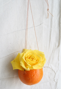yellow-rose-in-orange