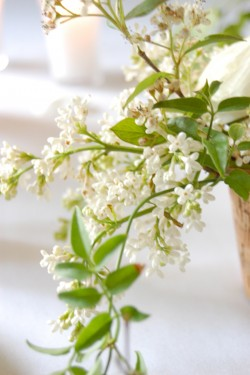Lilac and Linen DIY Wedding Table EAD-04