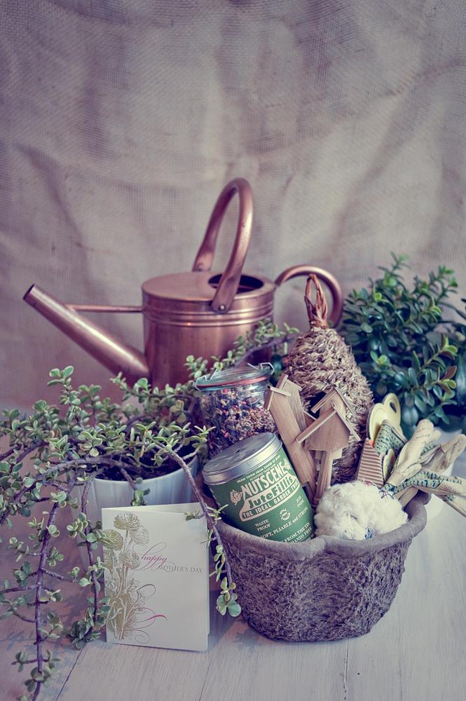 Diy Mother S Day Gift Ideas Elizabeth Anne Designs The
