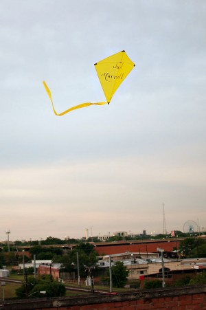 Just Married Kite