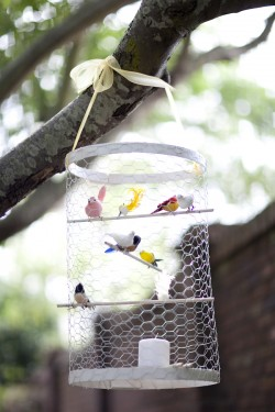 Birdcage in Tree