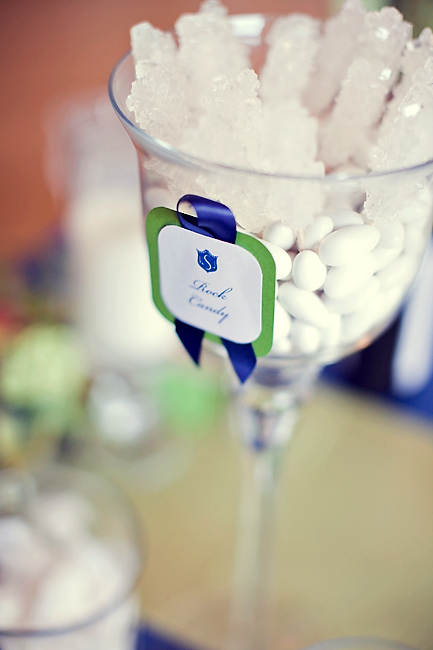 Blue and White Candy Buffet Wedding