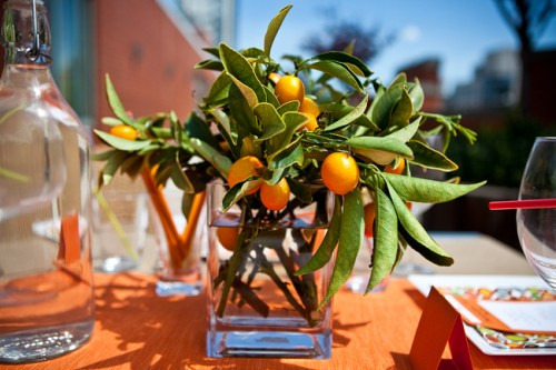 Kumquats Centerpiece