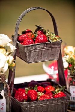 Strawberries in Galvanized Pail
