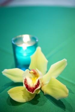 single-green-orchid-centerpiece