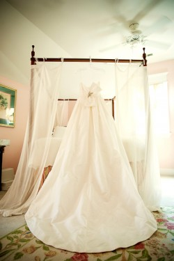 Amsale Serena Gown