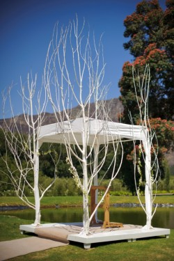 Branch Wedding Ceremony Altar