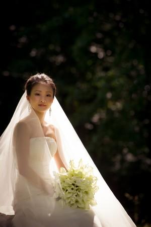 Dramatic Formal Bridal Portrait