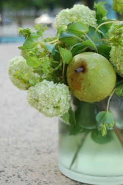 Apple and Hydrangea Centerpiece