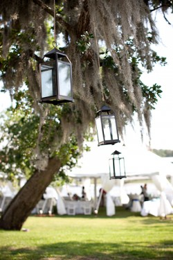 Hanging Candle Holder Spanish Moss Wedding Reception