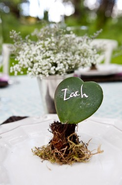 Heart-Shaped Succulent Place Setting